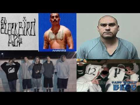 Pomona 12 Street Gang History (Pomona, Ca)