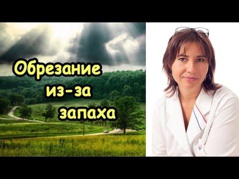 Баланит, баланопостит, фимоз - симптомы, лечение