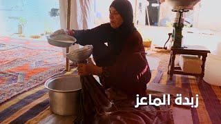 السمن العربي و زبدة الماعز : مهارة البدو.. ومنتج البادية السورية الأشهر