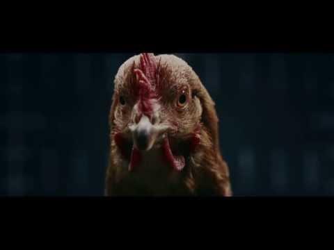 Смешная реклама связаная с курицами Mersedes 2013