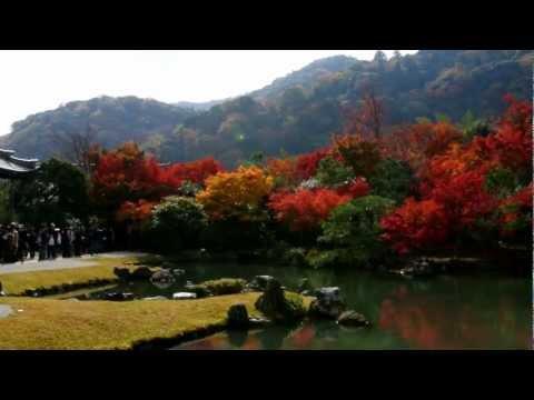 京都 秋の天龍寺 Historic Monuments of Ancient Kyoto