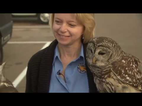 World Bird Sanctuary 'Owl Prowls'
