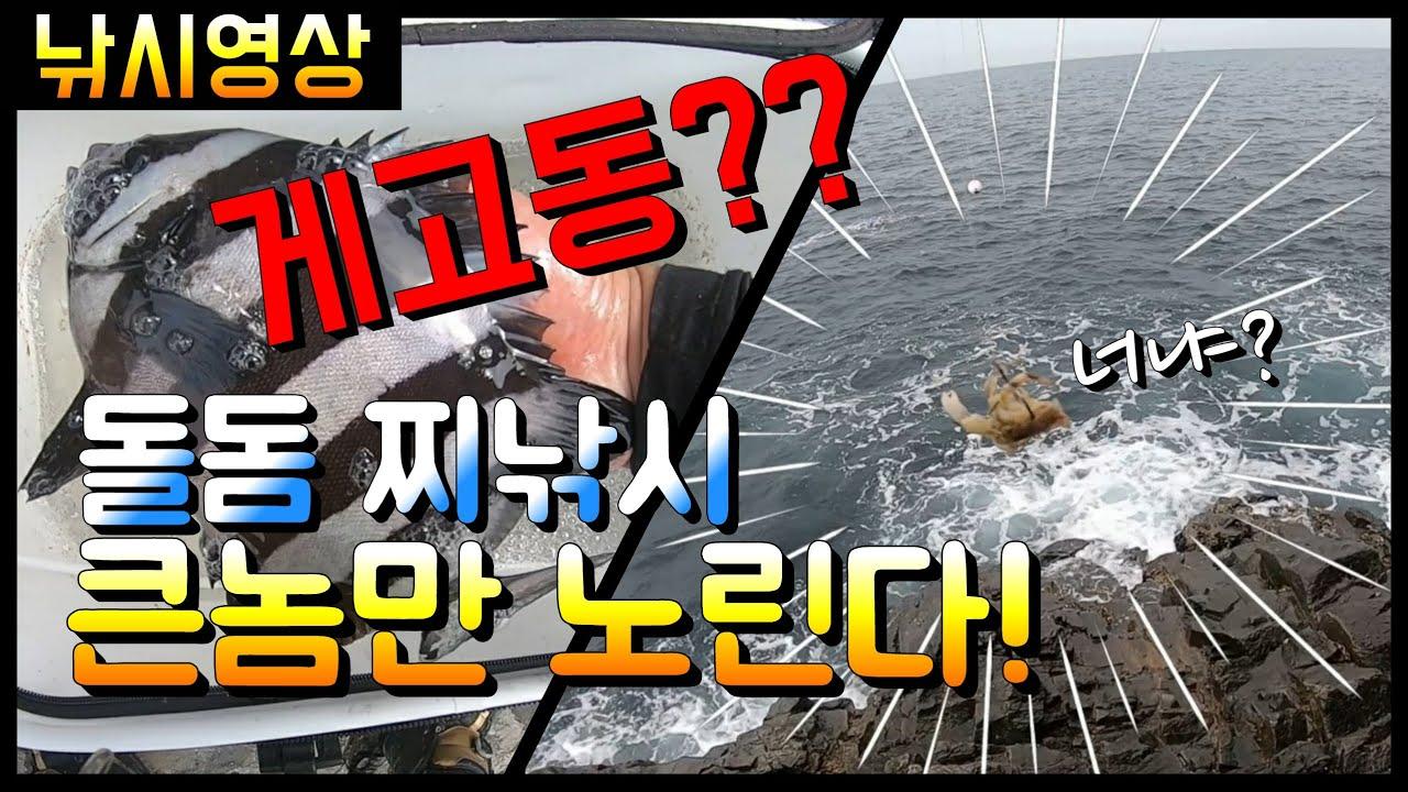 """[낚시영상] 신종미끼 돌돔 """"찌"""" 낚시 l 미끼전문가 와 함께하는 낚시 (feat. 박과장)"""