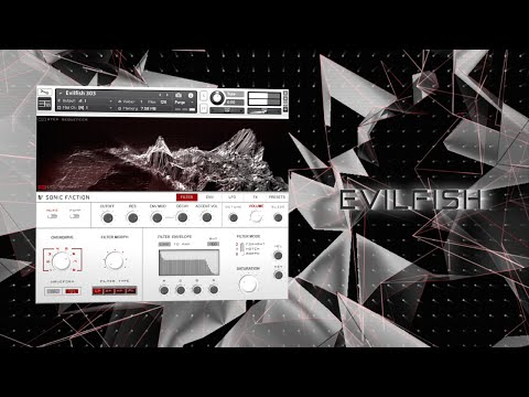 Talking Basslines with Evilfish 303