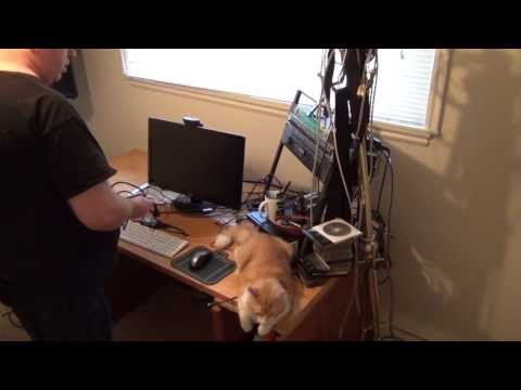 How to set up a home recording studio with your cat