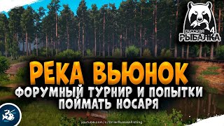 Русская Рыбалка 4 Рыбалка на Вьюнке Дневной лайт 5 й отборочный
