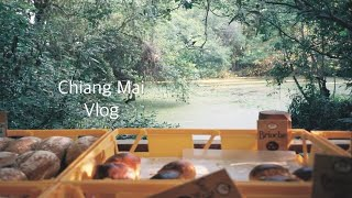 태국 치앙마이 일상 브이로그 #20 전통 건축물의  아…