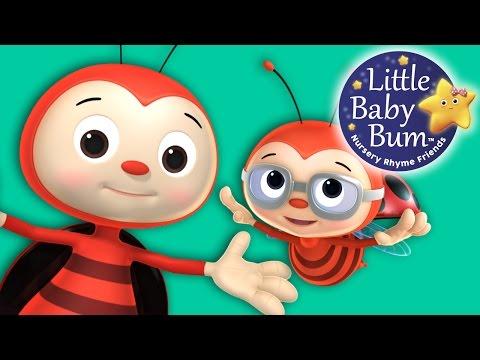 Ladybug Ladybug | Nursery Rhymes | Original Song By LittleBabyBum!