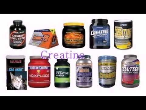 4 Best Supplements for Bodybuilding