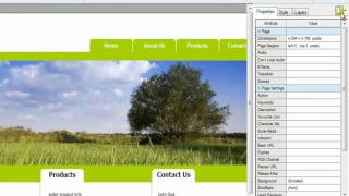 Inserting HTML into the head section of Web Easy 8