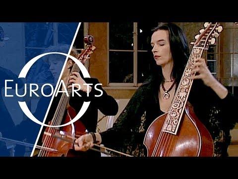 Bach: Brandenburg Concerto No. 6 in B flat major, BWV 1051 (Freiburger Barockorchester)