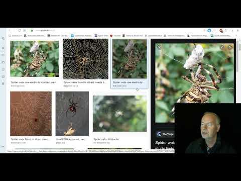 Befreiung aus dem Spinnennetz - Ende der CVM2 Iutiub Praesenz