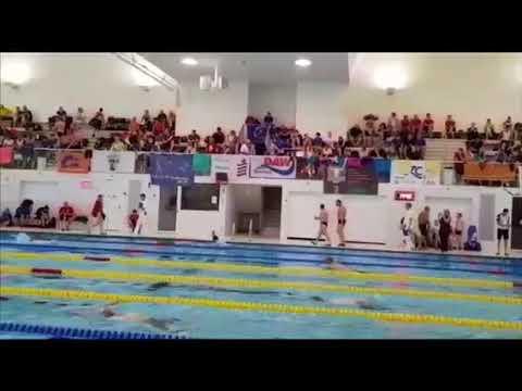 Hofbad den haag openingstijden nuttige zwembaden den haag