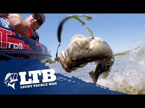 Topwater Tip #2 For Bass Fishing: Soft Body Frog