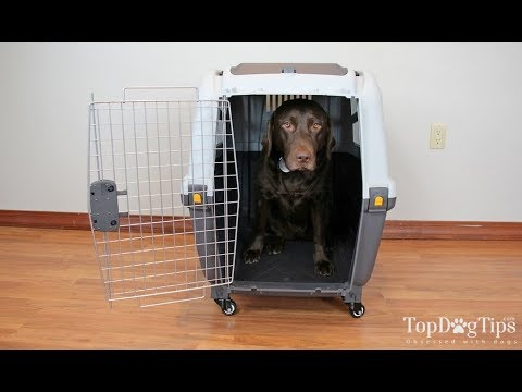 Midwest Homes for Pets Skudo Dog Carrier Review (2018)