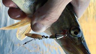 Эта вертушка творит чудеса! Рыбалка под мостом где много рыбы! Ловля на спиннинг Щуки и Судака