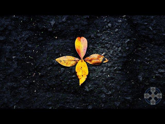 Grounding Meditation Music: Reset & Centre Your Heart.