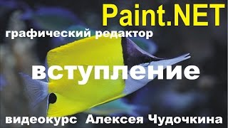 Видео уроки (обучение) по Paint.NET