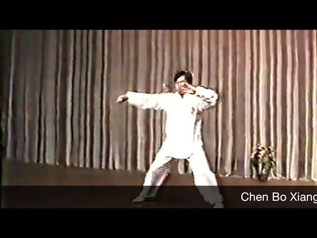 Chen Boxiang  - Tai Chi style Chen Xiaojia (1990s) Yi Ceng Lu [陈氏太极拳小架 Taijiquan style Chen Xiaojia]