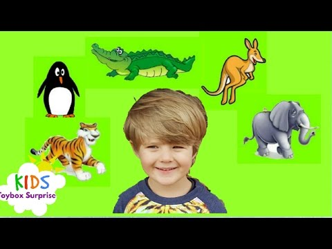 *Learn Animals with 🌏 World Map* educational video for kids and toddlers