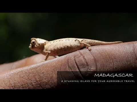 Madagascar paradisiac island for your agreable travel