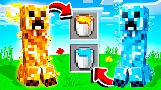 10 CREEPERS MINECRAFT NEVER ADDED!