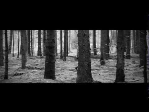 Rachel Sermanni - The Fog