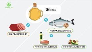 Полезные жиры и их роль в организме