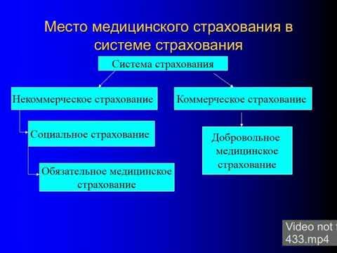 2013 Медицинское страхование граждан в РФ