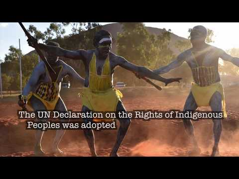 World still lagging on indigenous rights 10 years after historic declaration, UN experts warn