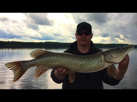 Northern Alberta Fishing Trip