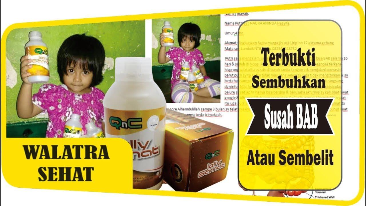 Obat Herbal Alami Paling Ampuh Sembuhkan Susah Bab Sembelit Qnc Jelly Gamat Jeli Emas Original