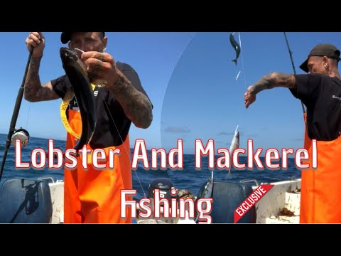 Lobster And Mackerel Fishing In UK Waters!!!