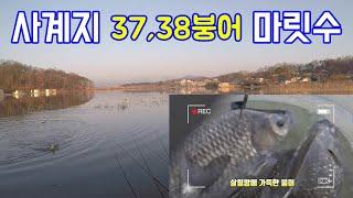 붕어 낚시 사계지 밤낚시 허리급 마릿수 조황, (초보자…