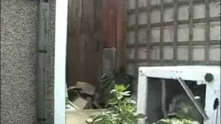 Guy Throws a Brick in a Dryer
