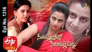 Seethamma Vakitlo Sirimalle Chettu   19th November 2019    Full Episode No 1316   ETV Telugu