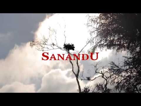 Sanandu Park - PGM 01 O Início