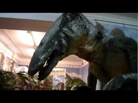 Энгельс, Планета динозавров, Hadrosaurus Гадрозавр