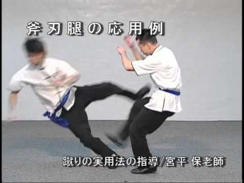 天行健中國武術館DVD武術篇より 斧刃腳の応用例 - YouTube