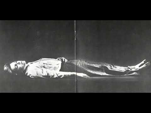 David Sylvian - Weathered Wall (Instrumental)