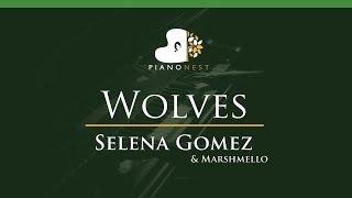 Selena Gomez & Marshmello - Wolves - LOWER Key (Piano Karaoke / Sing Along)