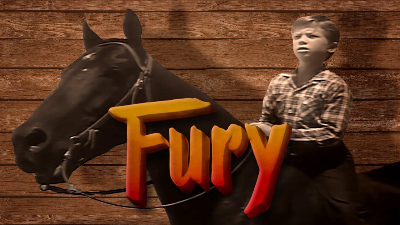 Download Fury   Season 1   Episode 3   The Horse Coper   Peter Graves   Bobby Diamond   William Fawcett