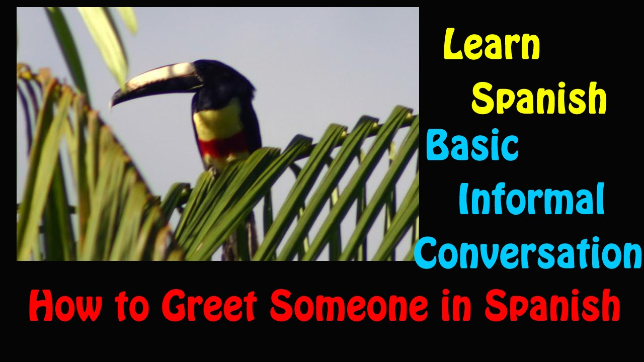 learn spanish how to greet someone in spanish basic informal