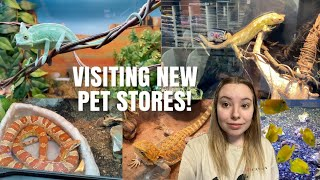 Visiting Pet Stores In My New City! | Pet Store Vlog With Ariel