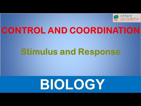 Stimulus and response - Control And Coordination - Biology - Class 10