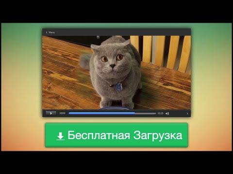 Видео Программы по заработку денег в интернете на автомате без вложений