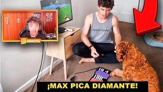 El primer perro que juega MINECRAFT... *no clickbait*