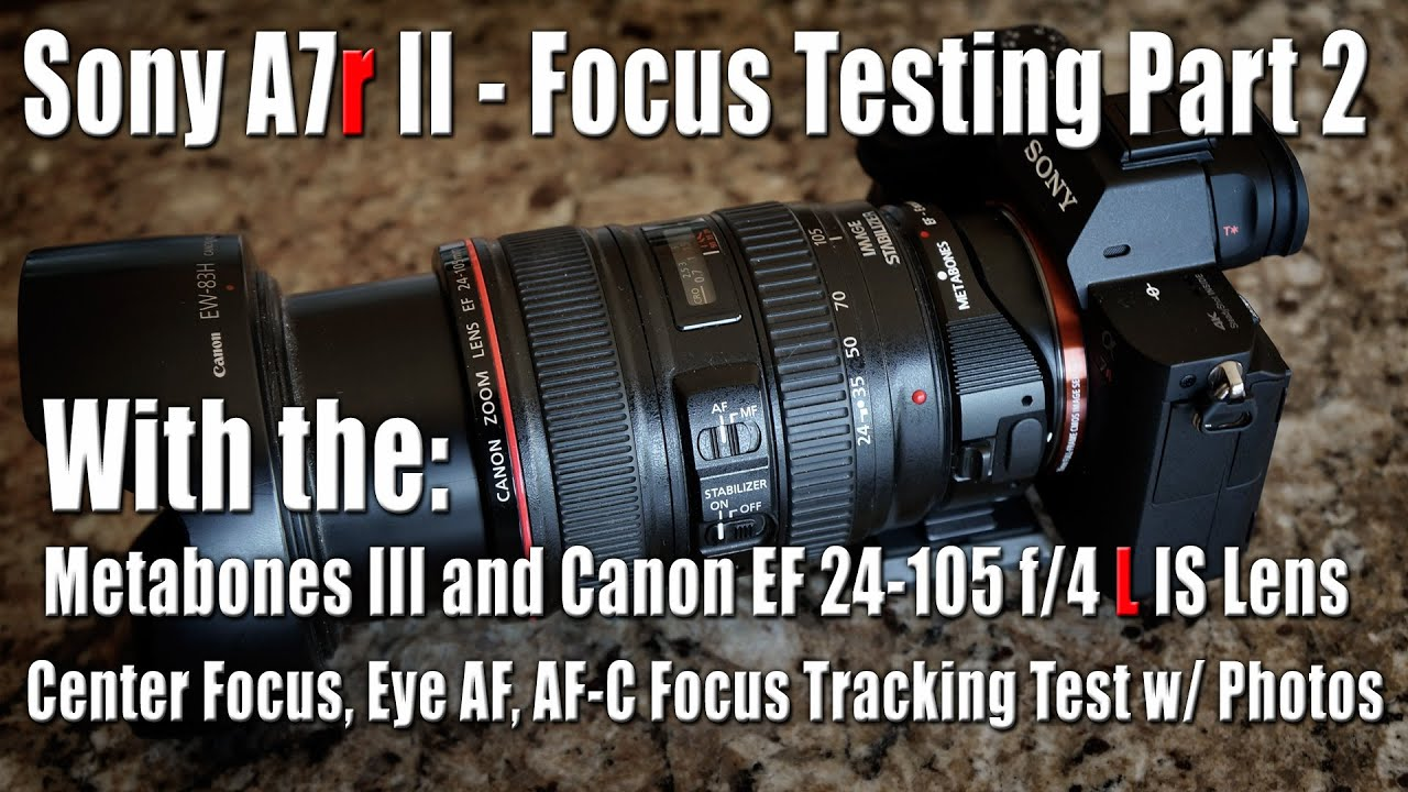 Sony A7r Ii Focus Testing W Canon Ef 24 105 F 4 L Is