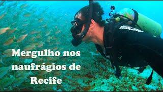 Mergulho nos naufrágios de Recife.