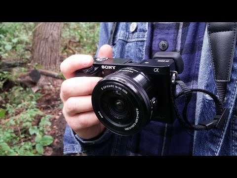 I Got a New Camera! Sony Alpha a600 First Impressions and Testing it out